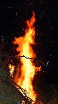Čarodejnice 2014